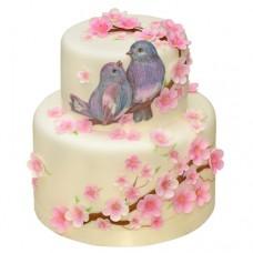 Торт «Птенчики»