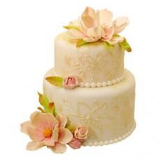 Торт «Разрисованная вуаль»