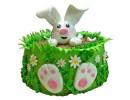 Торт «Зайка в саду»