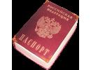 Торт в виде паспорта