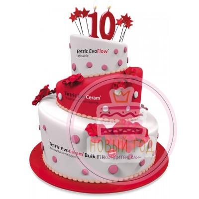 Торт на юбилей компании «Tetric Evo»