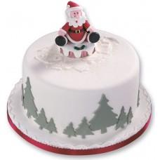 Торт с Санта Клаусом на снегу