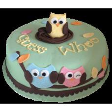 Торт с совами