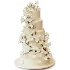 Торт с веточками белых цветов
