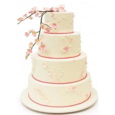 Торт с веточкой сакуры