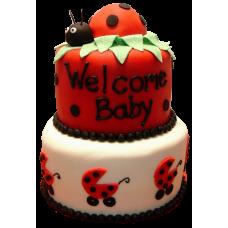 Торт на рождение с божьей коровкой